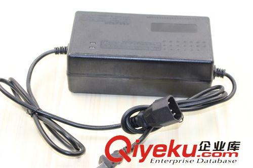 电动车充电器 捷安特/捷马专供 绿能电瓶车电动车充电