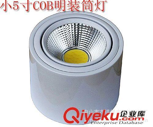 铁质明装筒灯吸顶灯饰客厅灯圆形LED筒灯 铁壳白色黑色筒灯