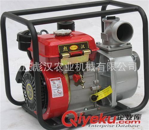 """排灌机械 质量非常稳定的""""彪汉""""168柴油机水泵,是河南,山东,贵州抽水机{sx}"""