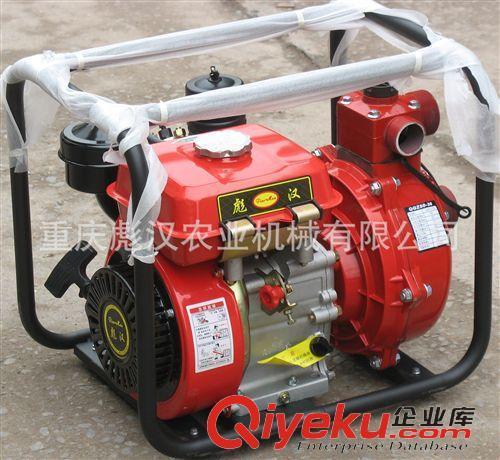 排灌机械 彪汉牌168柴油机高扬程水泵,烧柴油的小型高压泵,2寸高扬程水泵