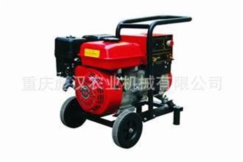 电焊机 重庆彪汉供应100A,200A汽油发电电焊机,300A内燃机发电电焊机