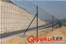 荷兰网 3.5mm浸塑荷兰网,养殖围栏网,果园护栏网,圈地围栏 厂价直销