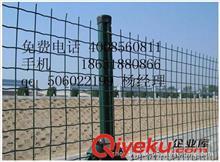 荷兰网 1.5米散养鸡围栏荷兰网,厂家供应,价格优惠,欢迎来电垂询
