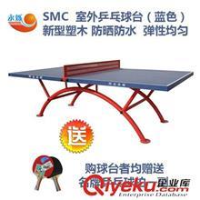 爆款推荐 厂家直销 家庭训练比赛迷你乒乓球台 SMC双彩虹腿室外乒乓球台