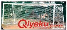 足球相关系列 XHHJ-厂家直销体育器材、足球门、全民(学生)体质测试仪