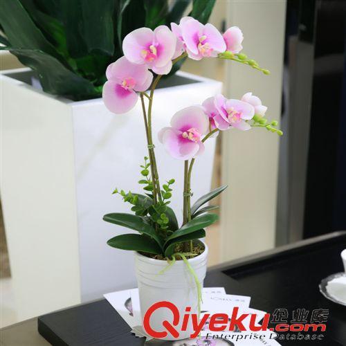 盆景套装 绿跃 义乌仿真花蝴蝶兰盆栽欧式客厅假花